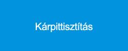 karpittiszt